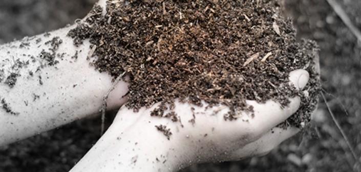 Grond en meststoffen